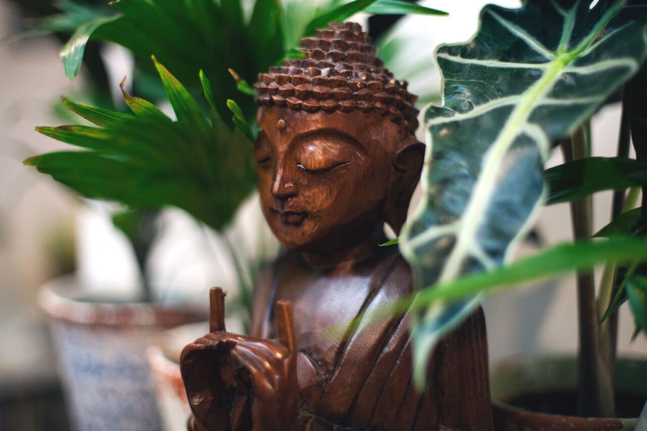 Vipassana, Vipassana – zapiski z drugiego kursu